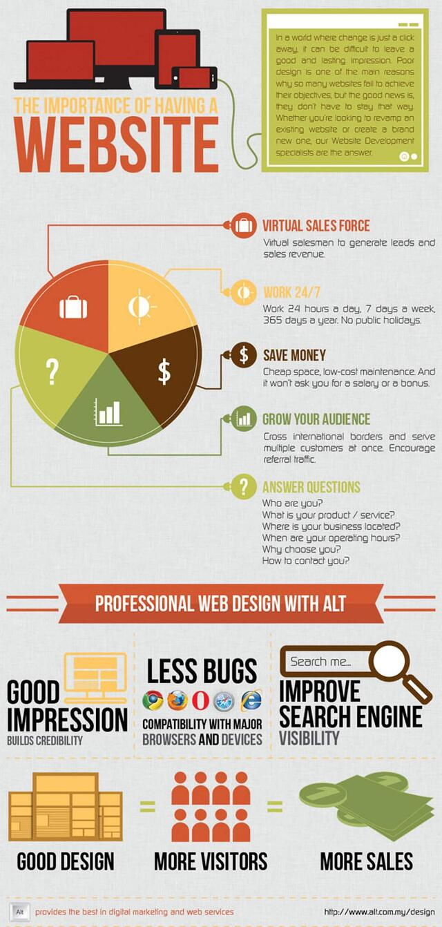 Importance of Website Infographic