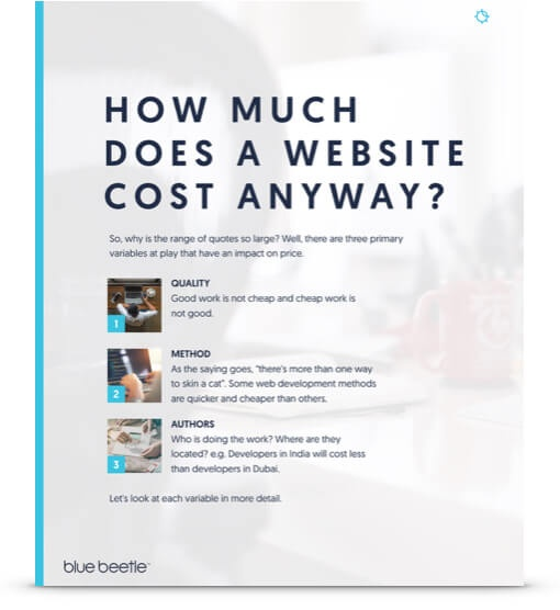 How Much Does a Website Cost - White-paper